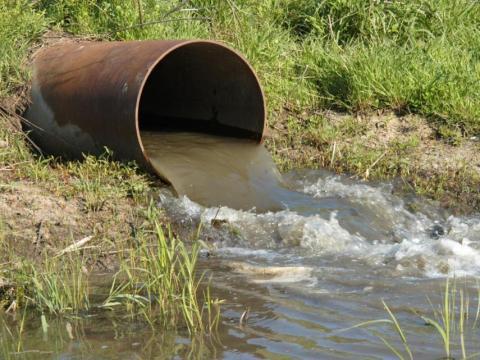 La mayor parte del agua que llega a los ríos también transporta fertilizantes y pesticidas agrícolas al océano.