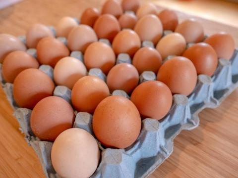 You should eat the whole egg to get vitamin B.