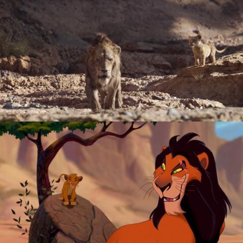 Además, deja a Simba en otro lugar.