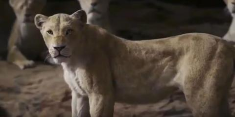 Nala se enfrenta a las hienas.