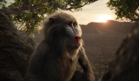 John Kani (Black Panther) le da voz a Rafiki en esta entrega.
