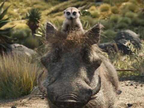 Billy Eichner y Seth Rogen ponen voz a Timón y Pumba.