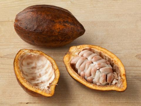 Las nuevas barras de chocolate sin azúcar se aprovecharán del sabor que aportan los granos de cacao y dulzura de la pulpa de cacao blanco, que proviene de la fruta de cacao