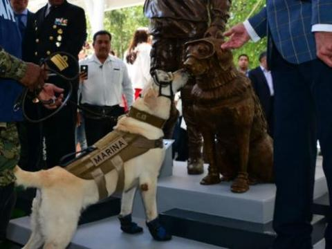 Frida was credited with saving at least 12 lives after a deadly earthquake in Mexico City.