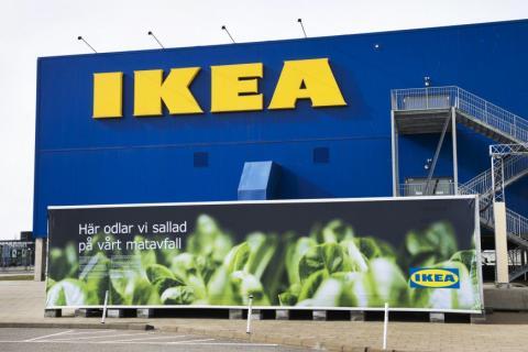 Ikea cultivo de lechugas