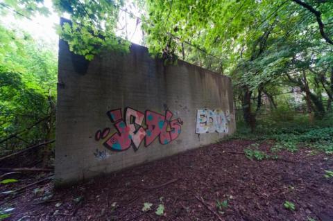 Mucha gente ha venido a la isla de manera ilegal y como prueba tenemos estos grafitis en un muro