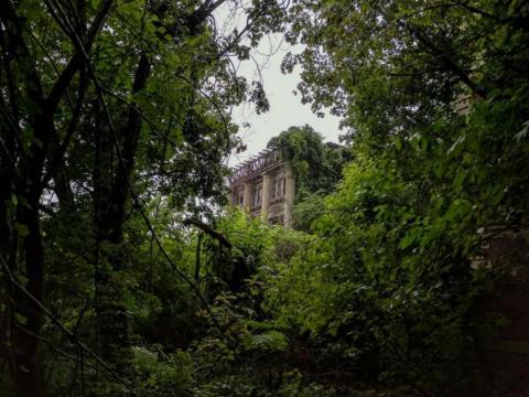 Muchos edificios se esconden en la naturaleza
