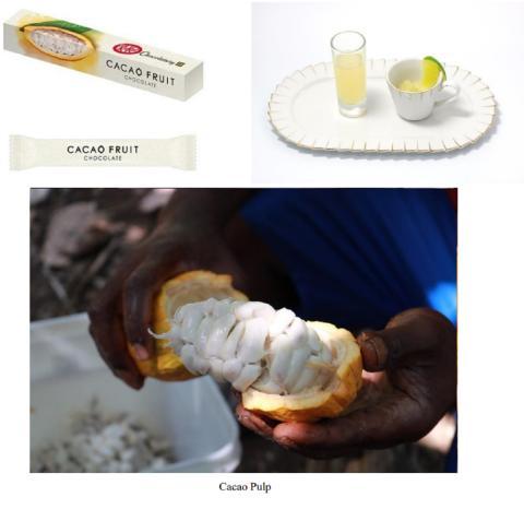 Un nuevo concepto de alimentación saludable