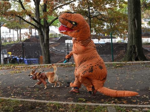 A dog and its owner in costume are seen during the 28th Annual Tompkins Square Halloween Dog Parade.