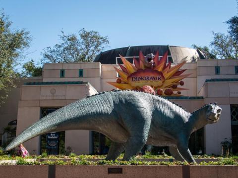 La pistola de un hombre fue encontrada en la atracción del Dinosaurio.
