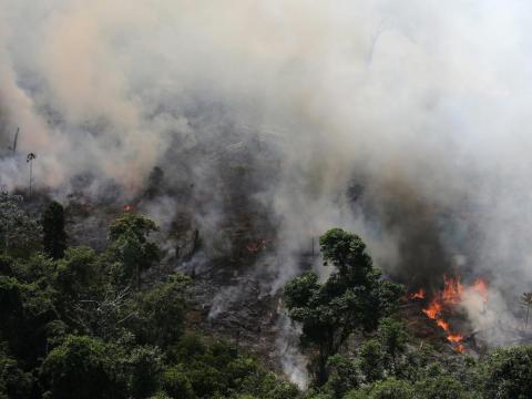 Un trozo de la selva amazónica ardiendo cerca de la ciudad de Novo Progresso, Brasil.