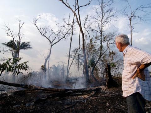 El bosque a unos 110 kilómetros de Xinguara, en el estado de Para, Brasil.