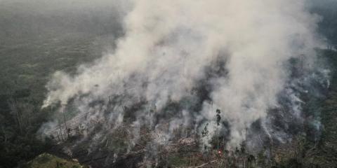 Una vista aérea de una zona de la selva amazónica en llamas