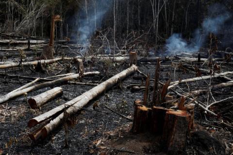 Un tramo de selva amazónica se quema durante la tala por parte de madereros y agricultores en Novo Airao, estado de Amazonas, Brasil, el 21 de agosto de 2019.