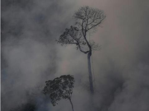 Humo sobre un incendio en la selva amazónica cerca de Porto Velho el 21 de agosto de 2019.