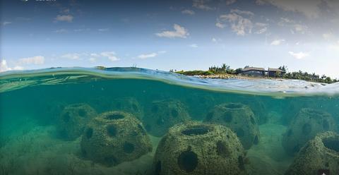 Arrecifes creados por la empresa Eternal Reefs.