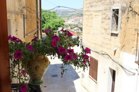 The first floor even boasted a balcony, which was ripe for covering in flower pots.
