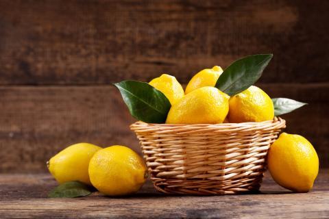 limón es un remedio natural contra los mosquitos