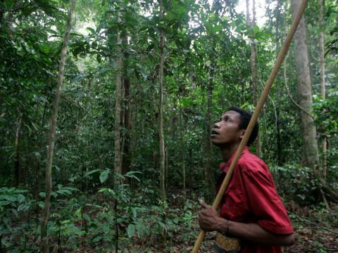 Un hombre de la tribu Batek caza en una selva cerca del Parque Nacional Kuala Koh en el estado malaysiano de Kelantan, el 21 de octubre de 2009.