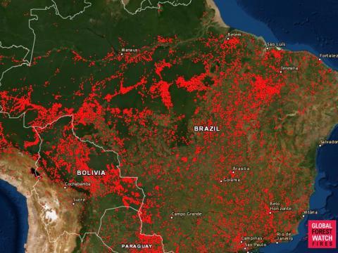 El siguiente mapa muestra todos los incendios que han comenzado en Brasil desde el 13 de agosto de 2019.
