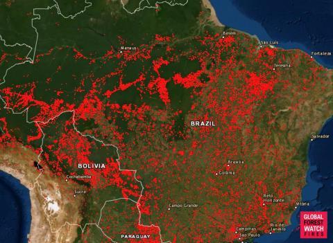Un mapa muestra cada incendio comenzado en Brasil desde el pasado 13 de agosto de 2019.