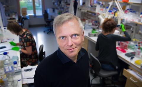 Patrik Ernfors, profesor del Departamento de Bioquímica y Biofísica Médica del Instituto Karolinska de Suecia.