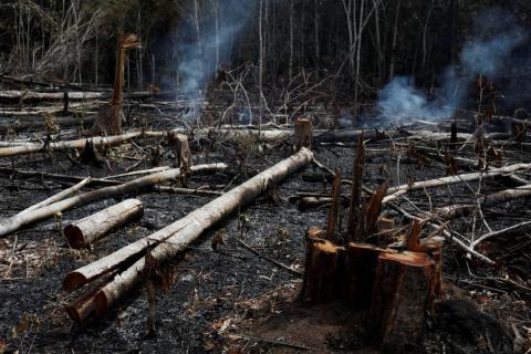 Un pedazo de selva amazónica ardiendo al ser talada por madereros y agricultores en Novo Airao, Brasil