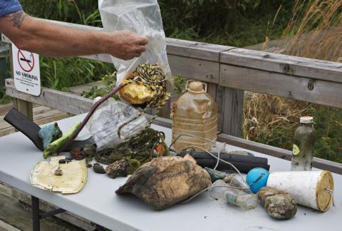 Algunos trozos de plástico retirados por una expedición de la isla de basura del Pacífico.