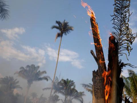 En Iranduba, estado de Amazonas, Brasil, el 20 de agosto de 2019, un tramo de selva amazónica se quema al ser despejado por madereros y agricultores.