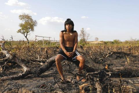 In the 16th century, when Portuguese settlers arrived in Brazil, there were about 3 million native people living there. Now there are only about 1 million. Indigenous peoples make up 1% of Brazil's population. Here, an indigenous