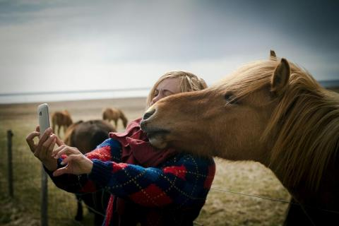 Y este precioso caballo también demuestra cómo posar para un selfie.