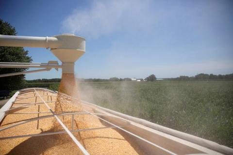 El maíz se carga en un camión en una granja en Tiskilwa, Illinois.