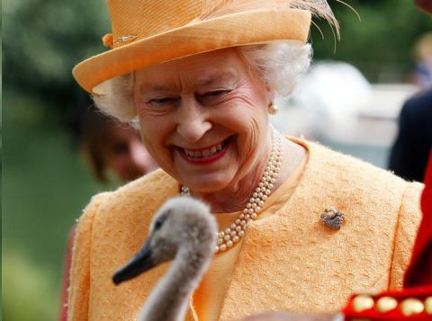 Lo más famoso es que es dueña de todos los cisnes del río Támesis.