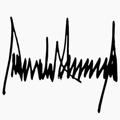 firma Donald Trump