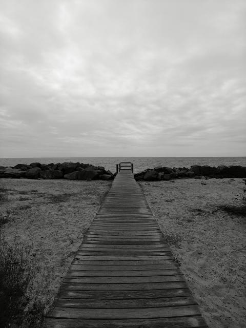 Foto en blanco y negro con LG V50 ThinQ