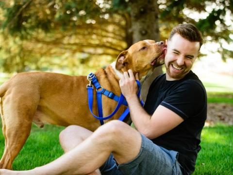Get a pet. Being a dog owner may signal that a man is nurturing and capable of making long-term commitments. It can also make someone appear more approachable.