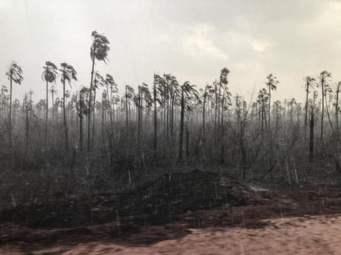 Most of the fires have been on private land. But in August, 3,500 fires were burning in 148 indigenous territories, according to Brazil's National Space Research Institute.