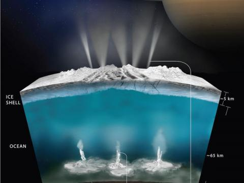 A NASA model shows what the interior ocean on Saturn's moon Enceladus could look like.