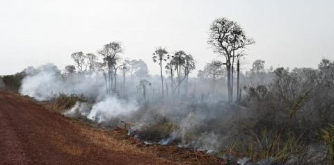 Sonia Guajajara, who coordinates the Articulation of Indigenous People of Brazil, told The Atlantic weakened governmental protections and new roads have contributed to the high number of fires because they broke the forest up and