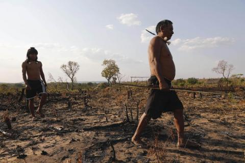 They hunt with bows and arrows. The fires have put them on high alert, and they said they would attack anyone who came onto their land unannounced.