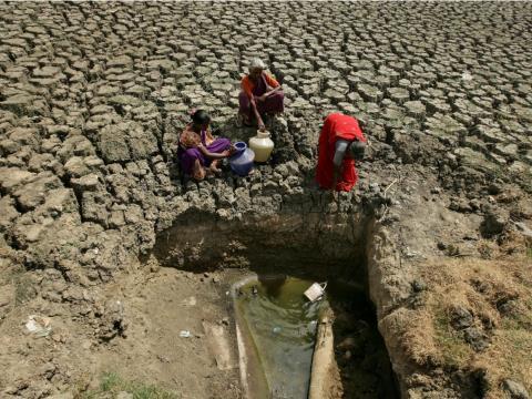 Mujeres recogen agua en una grieta en un lago seco en Chennai, India.