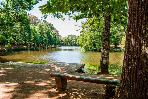 Lago en Ciudad Ducal, Las Navas.
