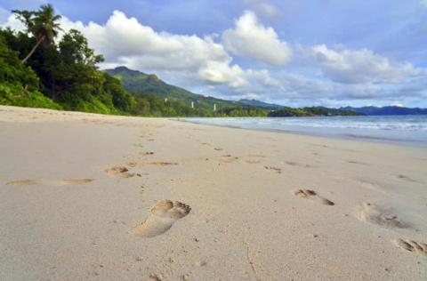 Seychelles es un archipiélago de 115 islas en el Océano Índico al este de África.