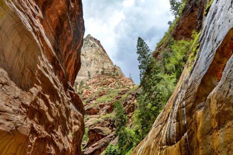 El sendero Narrows en el Parque Nacional Zion en julio de 2018.