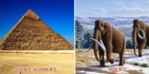 Los últimos mamuts lanudos murieron en el año 1650 a.C.