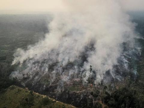 An aerial view of a tract of the Amazon jungle burning as it gets cleared by loggers and farmers, August 23, 2019.