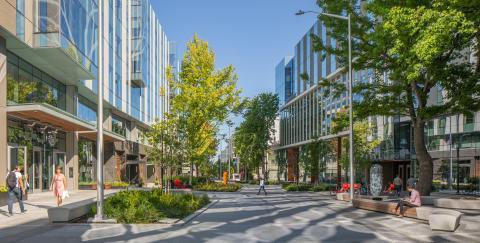 Vista de Arbor Blocks en Seattle.