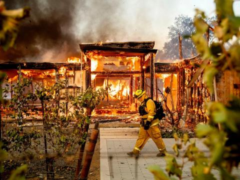 Dry vegetation in hot regions lights up easily, which means more frequent, bigger wildfires.