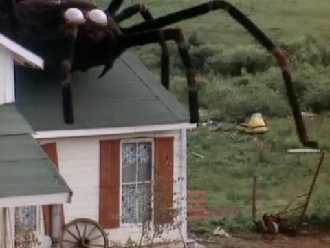 'The Giant Spider Invasion' (1975)