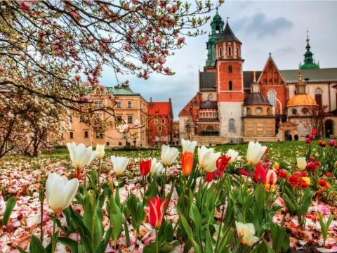 La ciudad es rica en historia y cultura y tiene buena comida, pintorescas calles adoquinadas y una hermosa arquitectura.
